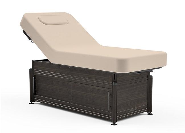 Oakworks-Clinician-Electric-Hydraulic-Lift-Assist-Backrest-Top