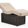 Oakworks-Clinician-Premiere-Electric-Hydraulic-Electric-Salon-Top